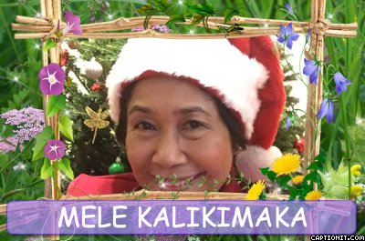 the song takes its title from the hawaiian phrase mele kalikimaka meaning merry christmas - Hawaiian Merry Christmas Song
